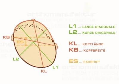 Zeichentrick & Webkonzept für Orthomanufaktur GmbH